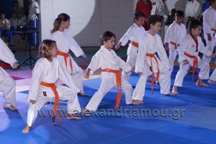 alexandriamou.gr_karate288095