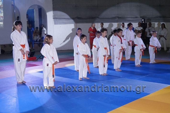 alexandriamou.gr_karate288096