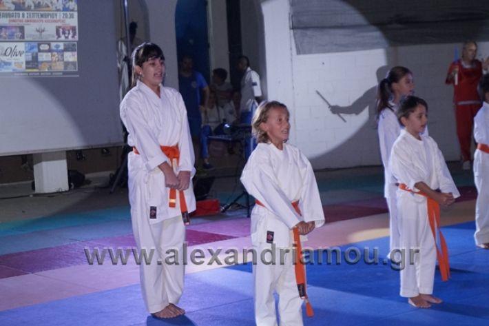 alexandriamou.gr_karate288097