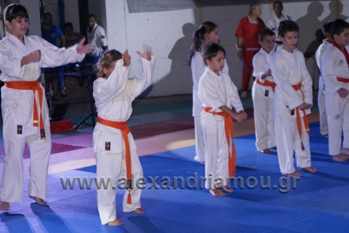 alexandriamou.gr_karate288098