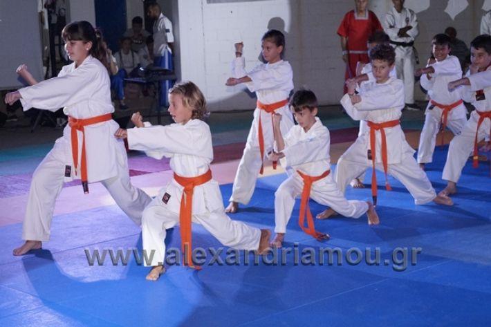 alexandriamou.gr_karate288099