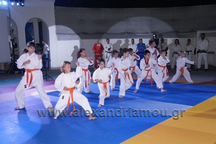 alexandriamou.gr_karate288100