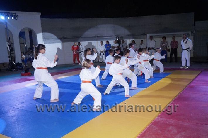 alexandriamou.gr_karate288101