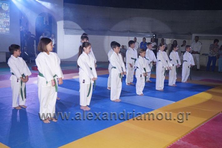 alexandriamou.gr_karate288108