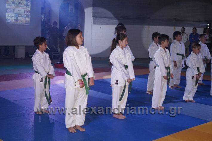alexandriamou.gr_karate288109