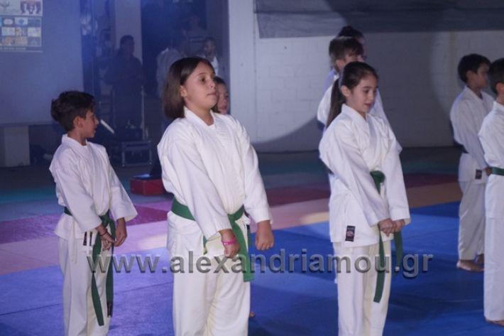 alexandriamou.gr_karate288110