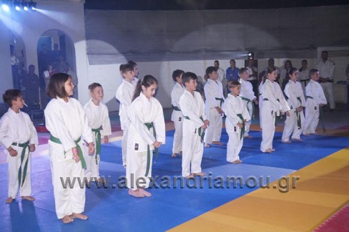 alexandriamou.gr_karate288111