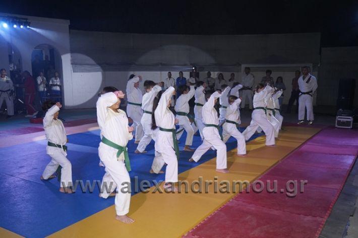 alexandriamou.gr_karate288112