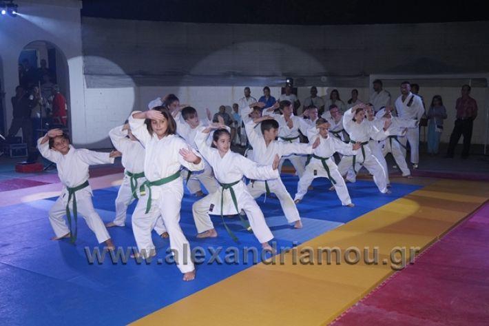 alexandriamou.gr_karate288114