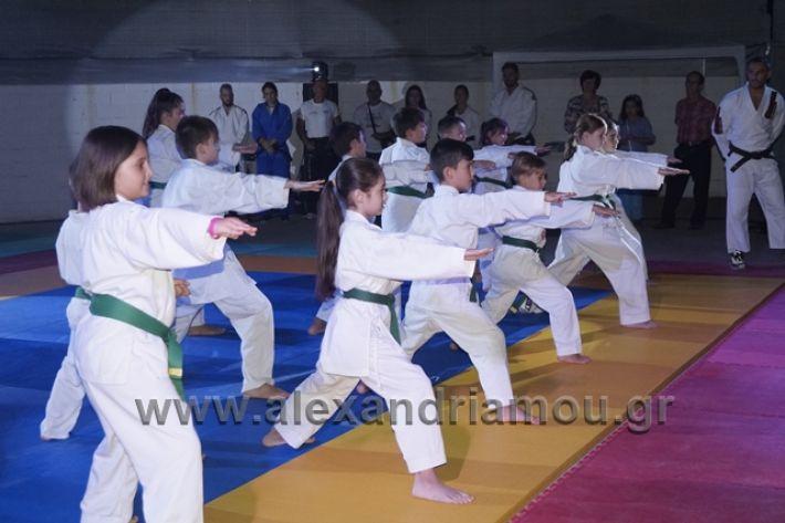 alexandriamou.gr_karate288115