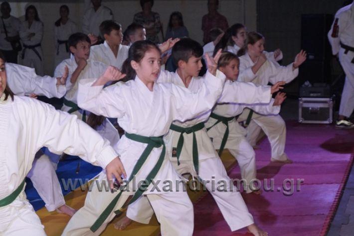 alexandriamou.gr_karate288116