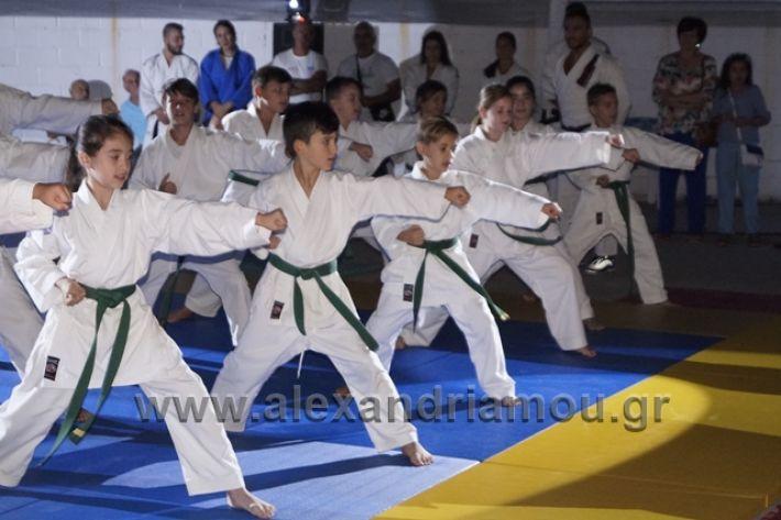 alexandriamou.gr_karate288117