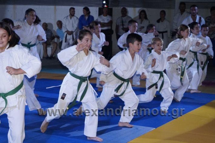 alexandriamou.gr_karate288118