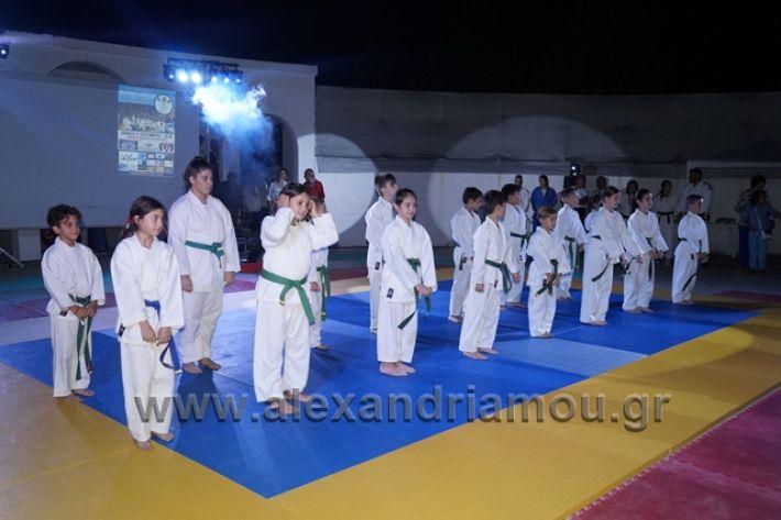 alexandriamou.gr_karate288124