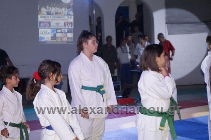 alexandriamou.gr_karate288125