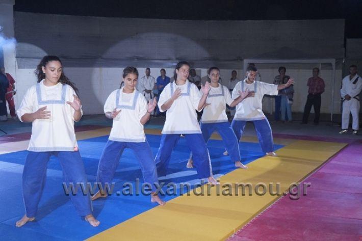 alexandriamou.gr_karate288136