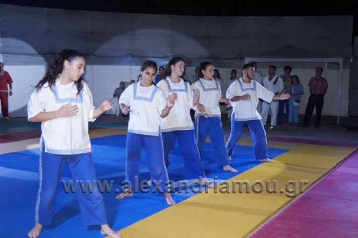 alexandriamou.gr_karate288144