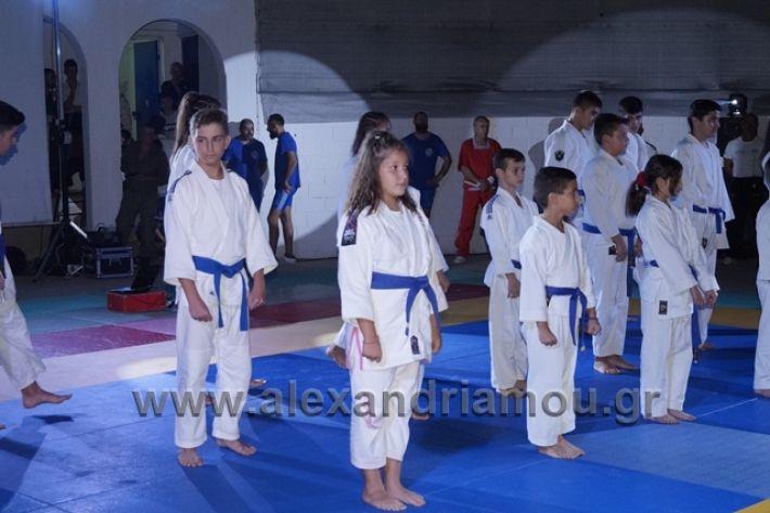 alexandriamou.gr_karate288147