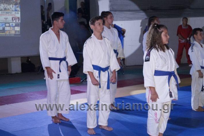 alexandriamou.gr_karate288148