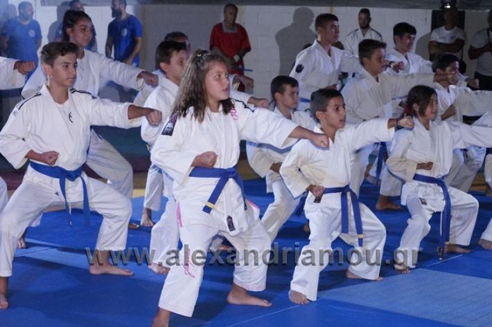 alexandriamou.gr_karate288151