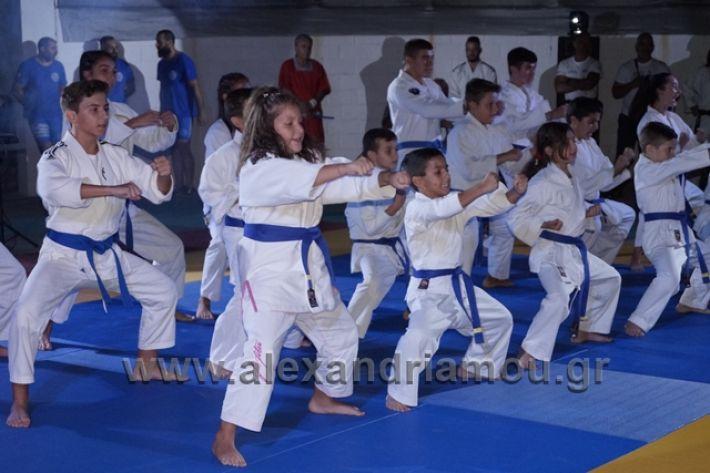 alexandriamou.gr_karate288152