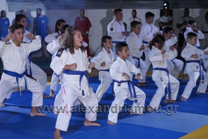 alexandriamou.gr_karate288153