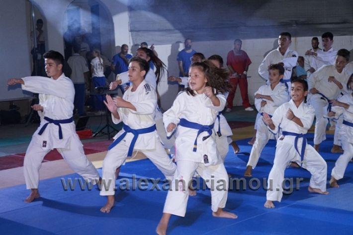 alexandriamou.gr_karate288155