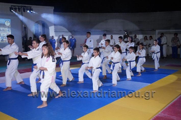 alexandriamou.gr_karate288156