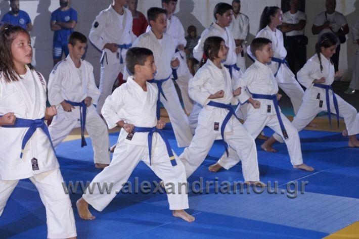 alexandriamou.gr_karate288159