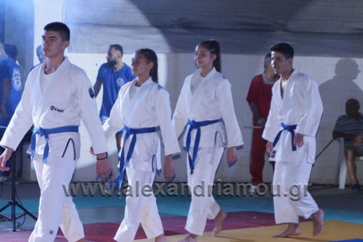 alexandriamou.gr_karate288160