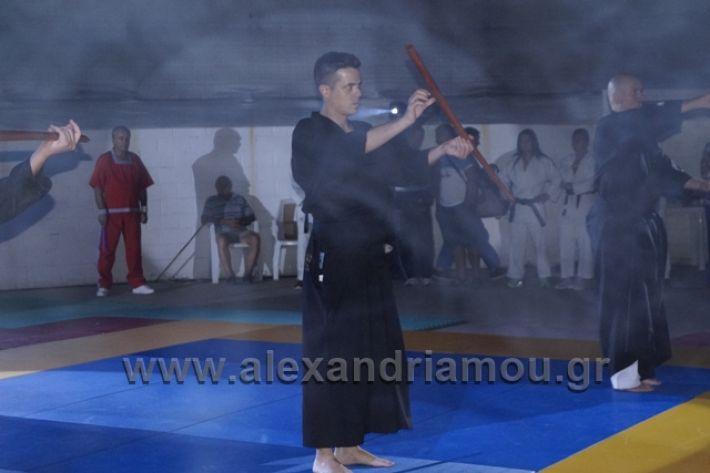 alexandriamou.gr_karate288166