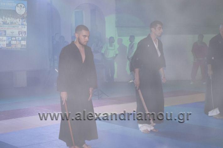 alexandriamou.gr_karate288167