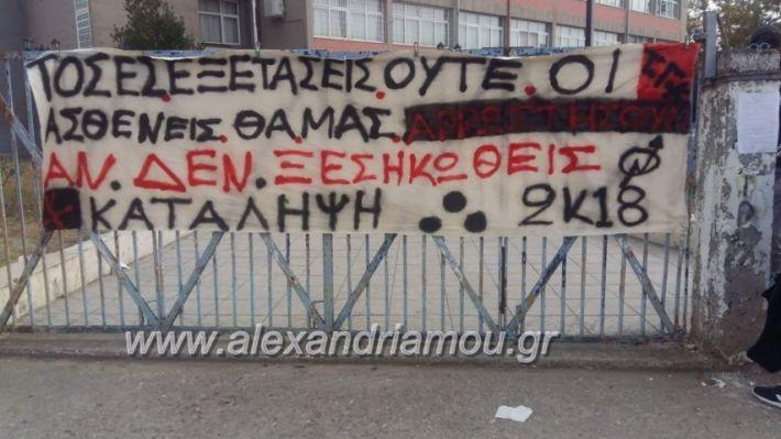 alexandriamou.gr_melikikatalipsi001