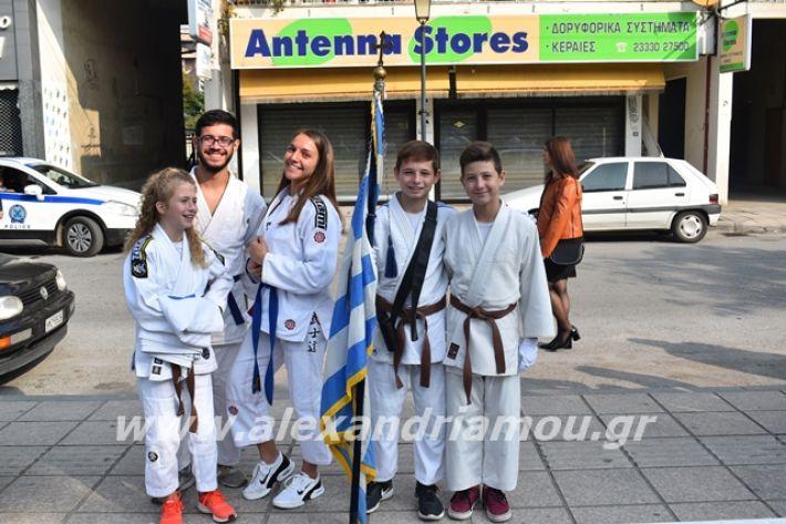 alexandriamou.gr_katathesi2019a142