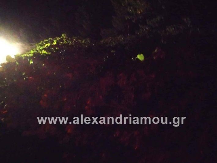 alexandriamou.gr_kerikaxoria006