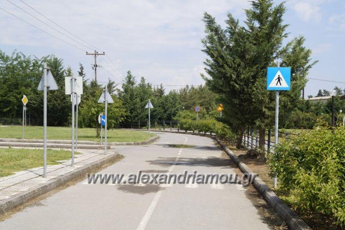 alexandriamou.gr_parko_kikloriakis_agois_amfitheatro005