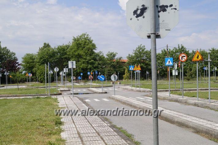 alexandriamou.gr_parko_kikloriakis_agois_amfitheatro006
