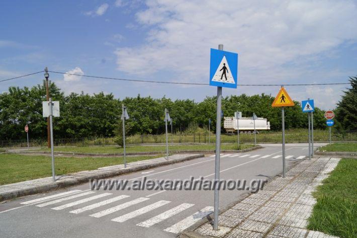 alexandriamou.gr_parko_kikloriakis_agois_amfitheatro016