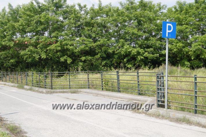 alexandriamou.gr_parko_kikloriakis_agois_amfitheatro022