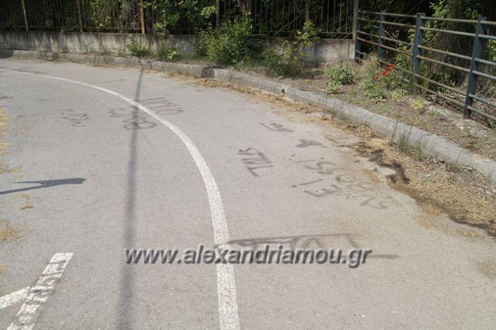 alexandriamou.gr_parko_kikloriakis_agois_amfitheatro028