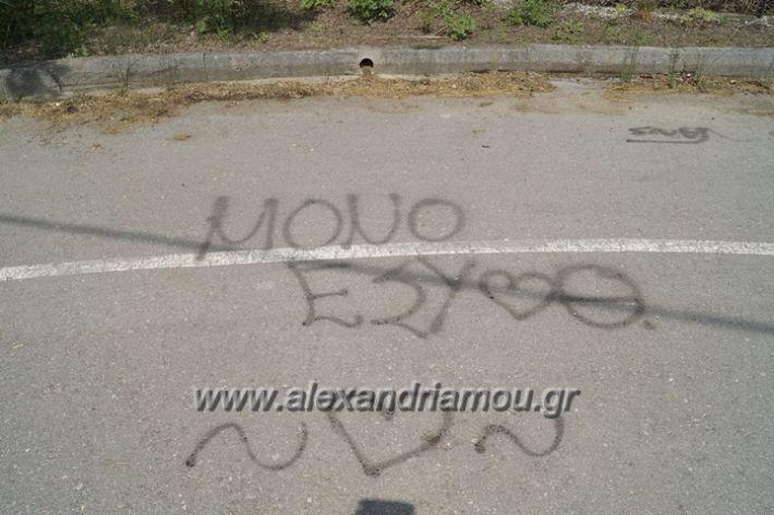 alexandriamou.gr_parko_kikloriakis_agois_amfitheatro029