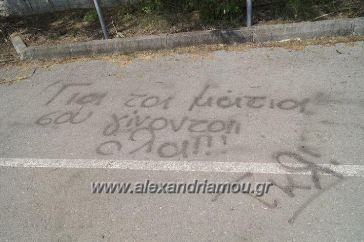 alexandriamou.gr_parko_kikloriakis_agois_amfitheatro030