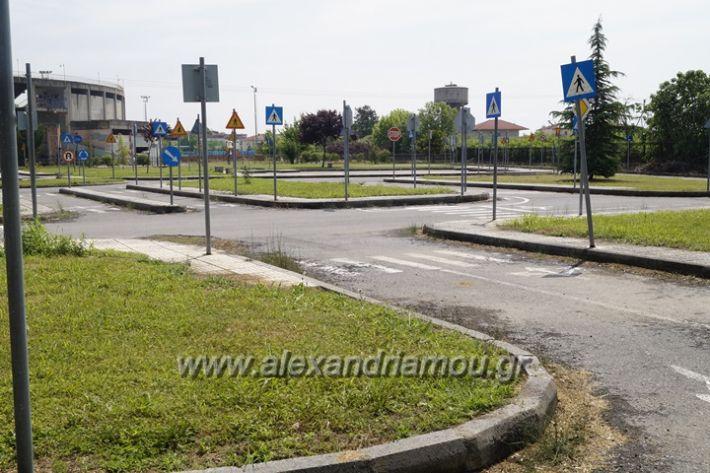alexandriamou.gr_parko_kikloriakis_agois_amfitheatro032