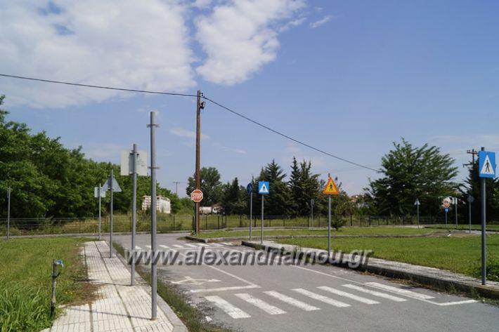 alexandriamou.gr_parko_kikloriakis_agois_amfitheatro036