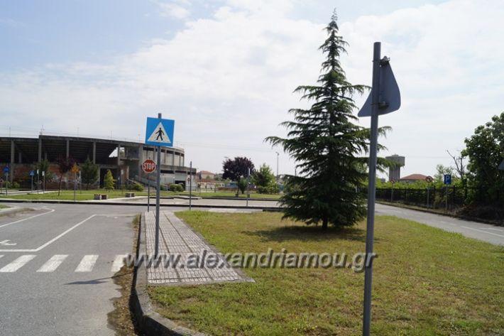 alexandriamou.gr_parko_kikloriakis_agois_amfitheatro039