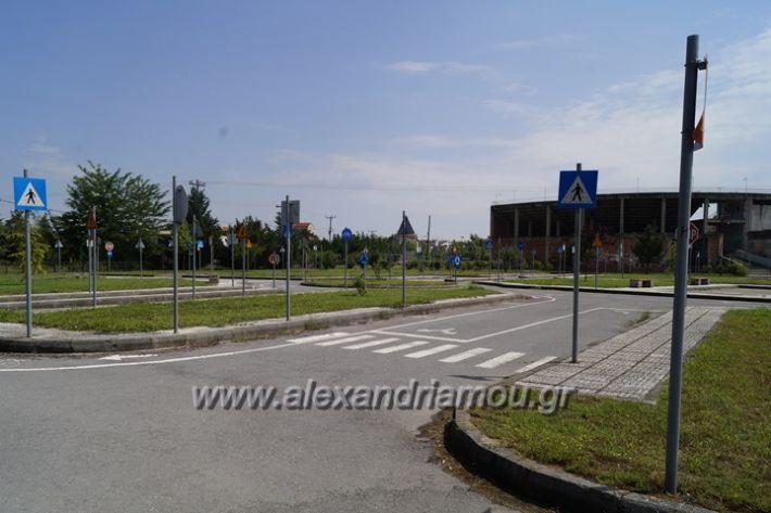 alexandriamou.gr_parko_kikloriakis_agois_amfitheatro040