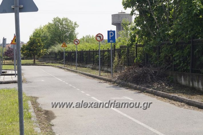 alexandriamou.gr_parko_kikloriakis_agois_amfitheatro041