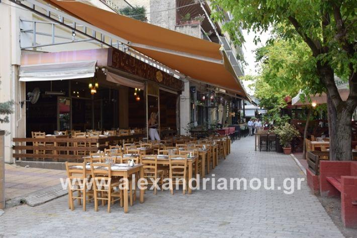 alexandriamou.gr_kinal20199035