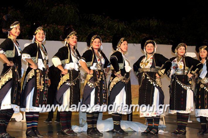 alexandriamou.gr_kipselideuterimera2019IMG_0247