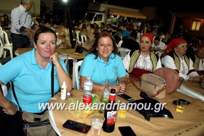 alexandriamou.gr_kipselideuterimera2019IMG_0261
